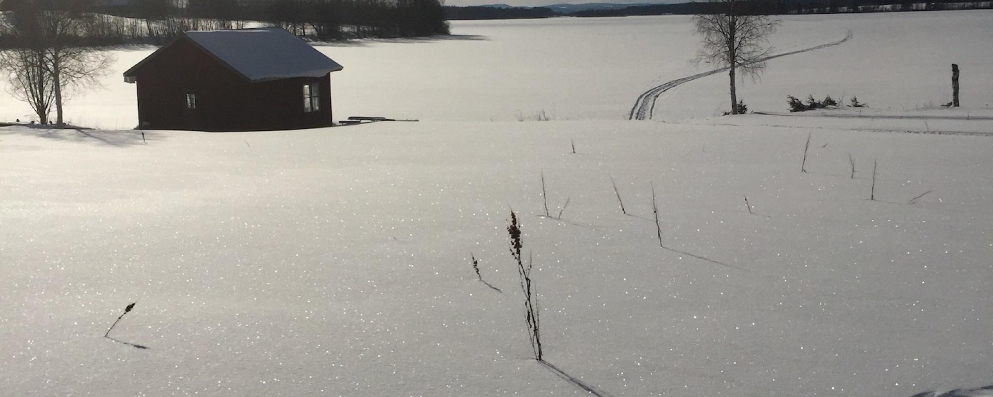 Vinter Digital Detox Camp Villa Insikt
