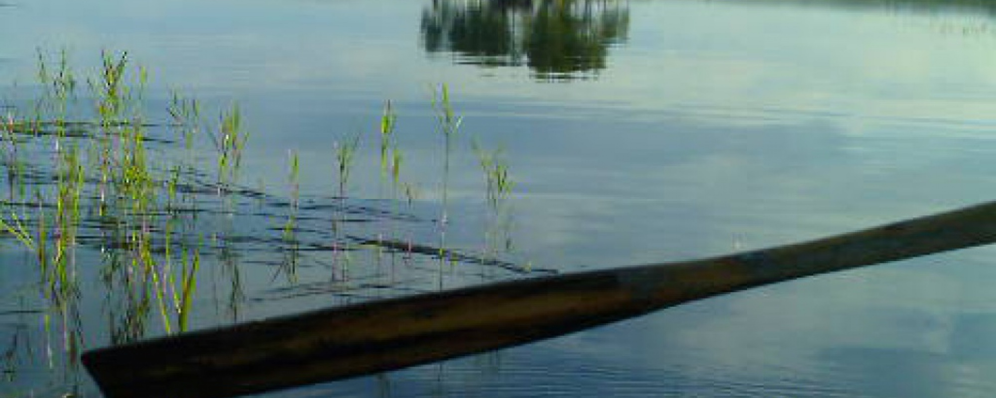 Rowboat in silence